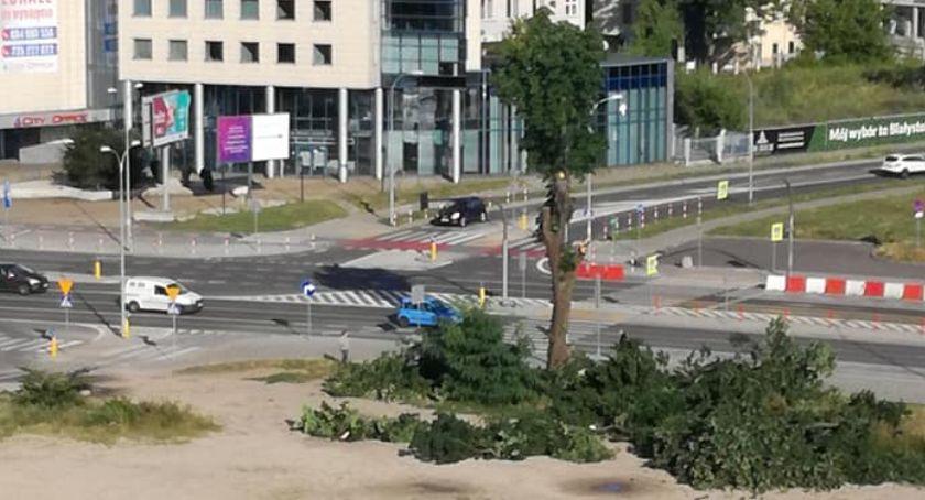 Wiadomości, Najpierw zniknął Market teraz okoliczne drzewa - zdjęcie, fotografia