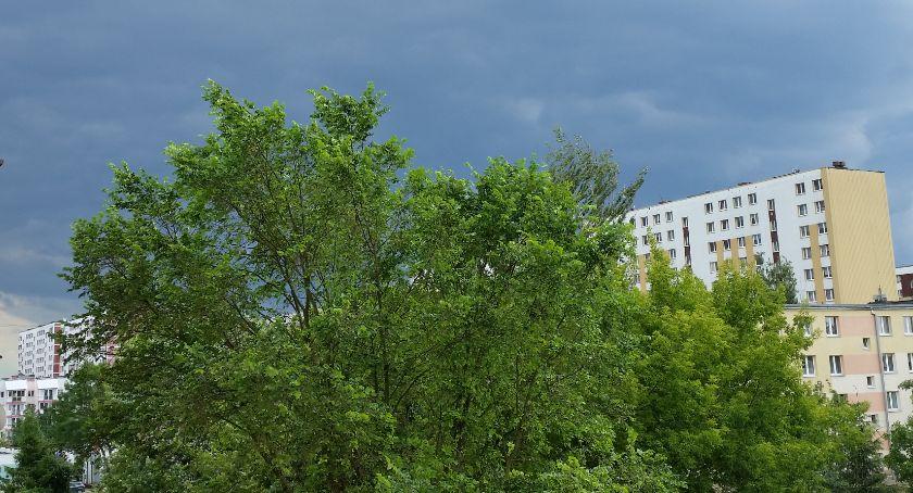 Wiadomości, Przez Podlasie przetaczają niebezpieczne burze - zdjęcie, fotografia