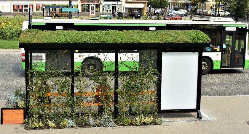 Wiadomości, Będzie trzeci zielony przystanek Białymstoku Mieszkańcy wybiorą - zdjęcie, fotografia