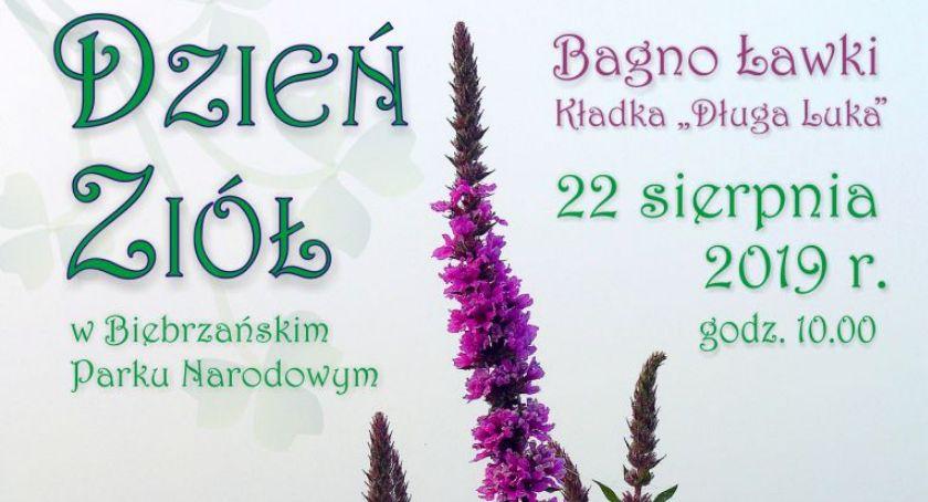 Wiadomości, Biebrzański Narodowy zaprasza Dzień Ziół - zdjęcie, fotografia