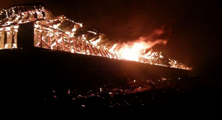 Wiadomości, Pożar Nowoberezowie Żywcem spłonęło świń - zdjęcie, fotografia