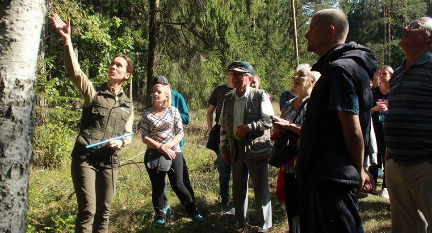 Wiadomości, Niepełnosprawni mogą poruszać lesie - zdjęcie, fotografia