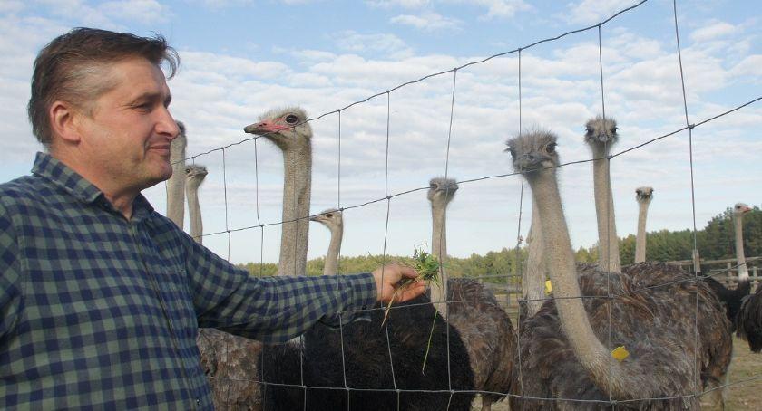 Blogi, Leszek specjalista strusiów - zdjęcie, fotografia
