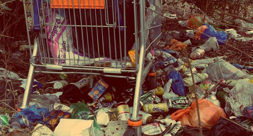 Styl życia, Rocznie wyrzucamy śmietnik około złotych - zdjęcie, fotografia