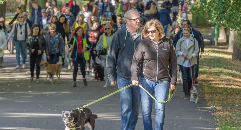Wiadomości, Niedzielna Parada Adopciaków Parku Planty - zdjęcie, fotografia