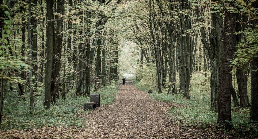 Styl życia, Natury oszukasz depresją jesienną trzeba sobie znów radzić - zdjęcie, fotografia