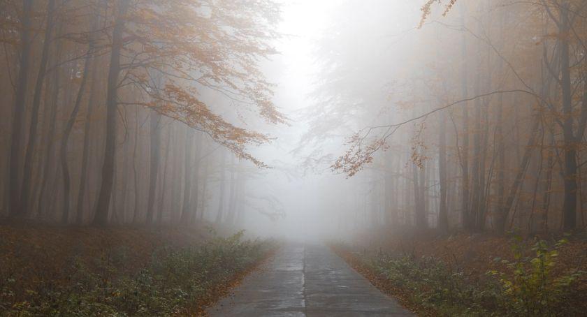 Wiadomości, północy regionu mgłę będzie można niemal nożem kroić - zdjęcie, fotografia