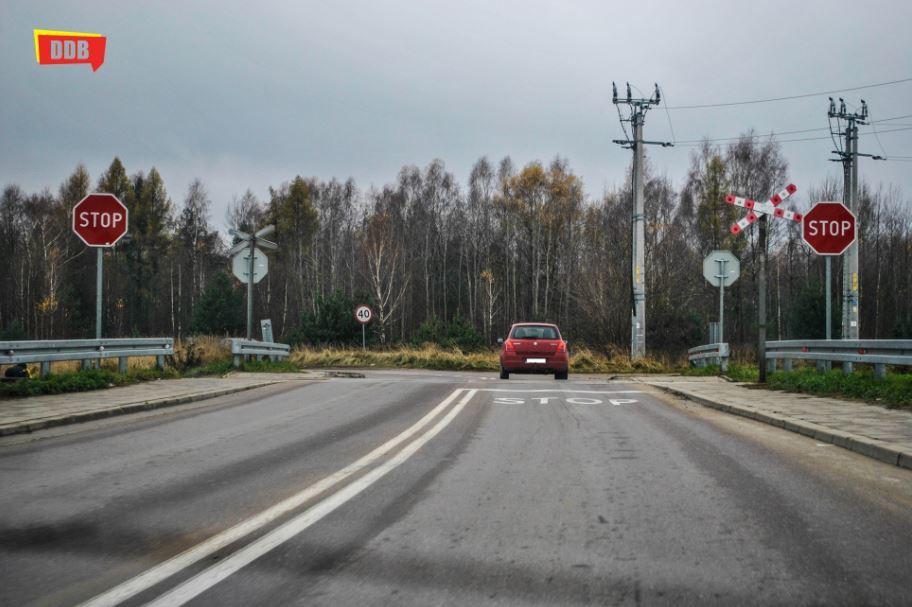 Wiadomości, Piknik Ekologiczny Lesie Turczyńskim - zdjęcie, fotografia