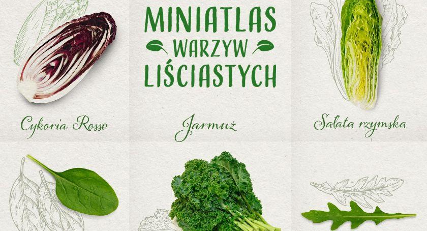 Styl życia, Musisz znać zielone warzywa liściaste leksykonie zdrowia - zdjęcie, fotografia