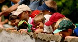 Maluch plus - rządowa pomoc dla żłobków i klubów dziecięcych. Wnioski do 16 grudnia