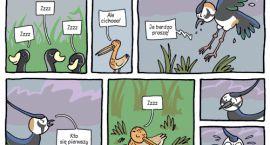 Warsztaty komiksowe nie tylko dla ryjówek z Tomaszem Samojlikiem