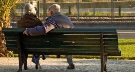 Premia za pracę dla wczesnych emerytów. Pracuj a rząd zapłaci 5 tysięcy rocznie