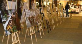 Wystawa Politechniki Białostockiej w Alfie