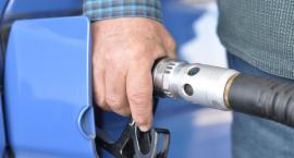 Wakacyjne wyjazdy - za paliwo płacimy mniej niż w ubiegłym roku