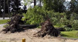 Trwa usuwanie szkód po czwartkowych burzach nad Podlasiem, ale zagrożenie nie minęło