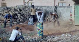 Żeby posłuchać śpiewających ptaków z Kigali wystarczy zajść do Kina Helios