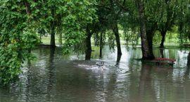 Po deszczu w Parku Antoniuk, na spacerze bardziej przyda się wędka niż rower