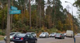 """Coraz więcej Polaków lubi sobie """"zagazować"""" auto"""