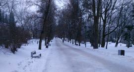 Wraca zima! Białostoczanie szykują się na mrozy i śnieżyce. I raczej nie liczą na miasto i drogowców