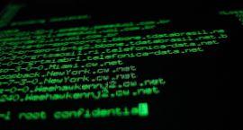 Hakerzy nie śpią