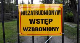 Cudzoziemcy garną się do pracy w Polsce. Czy są zagrożeniem?