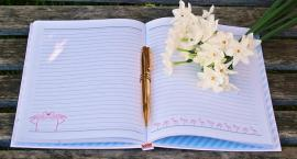 Lecą Wióry: Tajne notatki stażystki Marysi