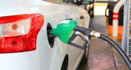 Ceny paliw szaleją. Tak drogo nie było od lat