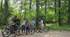Chcą więcej lepszych ścieżek rowerowych w lasach