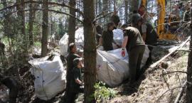 Leśnicy z Browska zakasali rękawy i posprzątali las