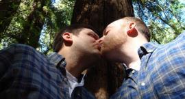 Petycja w sprawie legalizacji homozwiązków została odrzucona