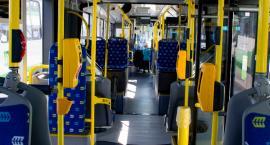 Nocne autobusy każdej nocy? Tego chce młodzieżówka PO