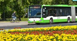 Białystok chce sobie kupić 20 nowych autobusów