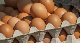 Lubimy jajka, jemy ich dużo, więc kilka rzeczy o jajkach warto wiedzieć