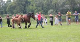 Najpiękniejsze konie prezentowały się w Drohiczynie