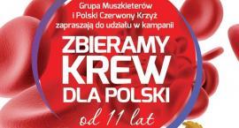 W Sokółce poleje się krew. Dla Polski