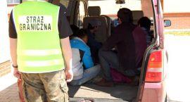 Nielegalni migranci w Augustowie
