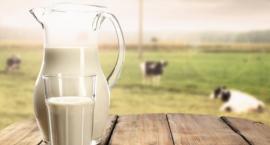 Na dobry początek roku szkolnego – mleczna wyprawka
