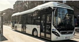 Polskie autobusy elektryczne są rozchwytywane
