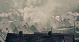 Plusy dodatnie i plusy ujemnie w walce ze smogiem
