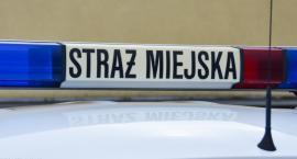 W Krakowie do pomiaru smogu zatrudniono Straż Miejską