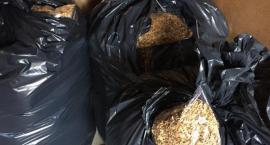 Mundurowi przechwycili ponad 2,5 tony nielegalnego tytoniu