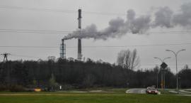 Polacy dostrzegają problem dewastacji środowiska naturalnego