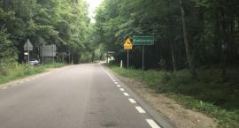 Cała Puszcza Białowieska ma być Parkiem Narodowym, ale otwartym?