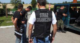 Chcieli dostać się do Polski przez zieloną granicę