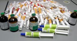 Przemyt nielegalnych leków weterynaryjnych za granicę się nie udał