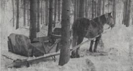Mija 79 lat od momentu pierwszych wywózek na Sybir
