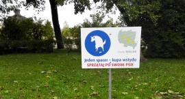 Psie niespodzianki: miłe i niemiłe
