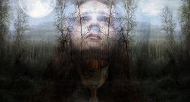 Uwaga, duchy w Supraślu