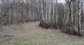 Wiosna zawitała do Białegostoku [KOMENTARZ VIDEO]