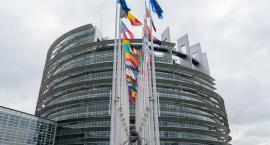 Na majowych wyborach do PE można sobie dorobić